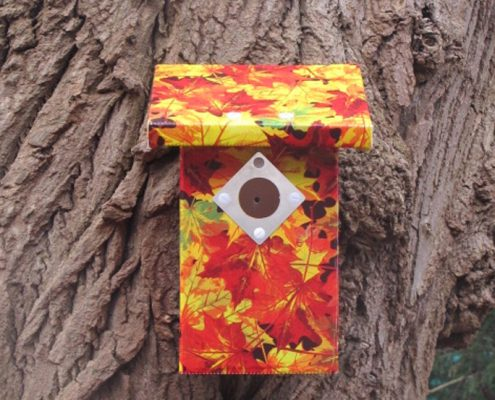 Bird House Maple